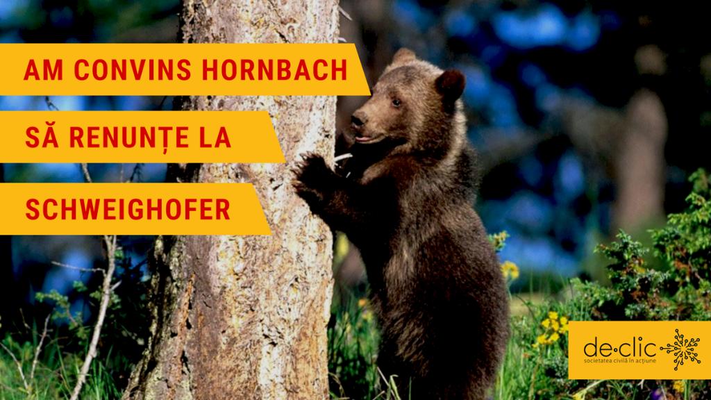 Hornbach România renunță la produsele din lemn de la Schweighofer
