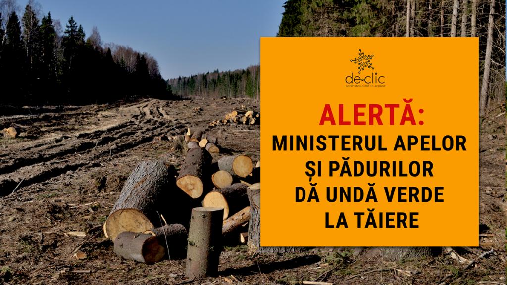 ALERTĂ: Consultare publică privind depășirea volumului de lemn care poate fi tăiat