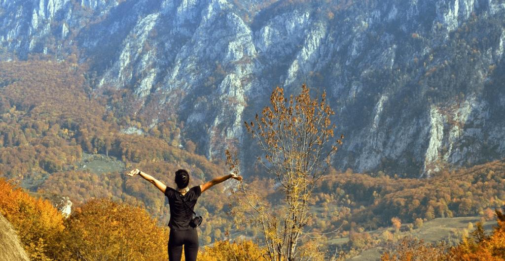 Cum să salvezi o pădure dacă ești perseverent