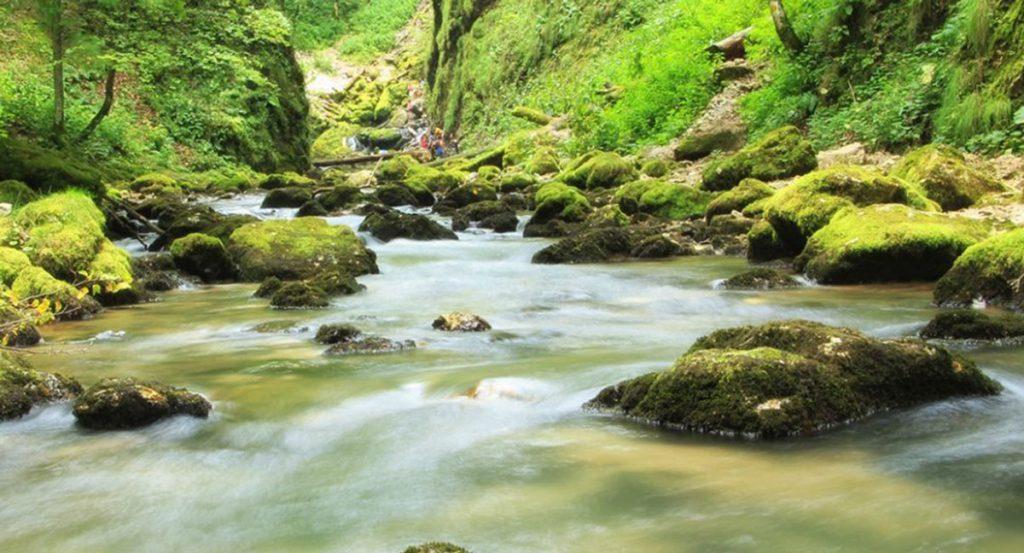 Cerem Comisiei Juridice din Camera Deputaților să oprească distrugerea râurilor prin hidrocentrale