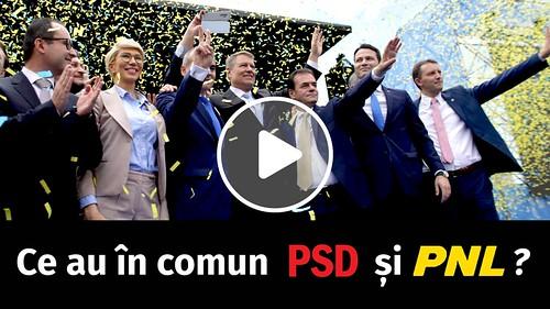 pnl psd sectia speciala