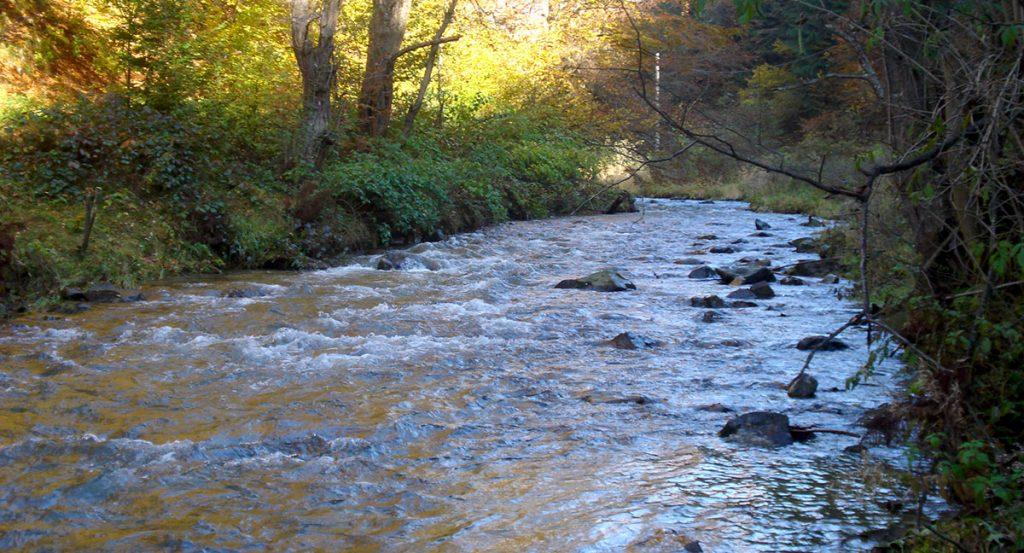 Cazul suprem al cauzei râurilor de munte din România