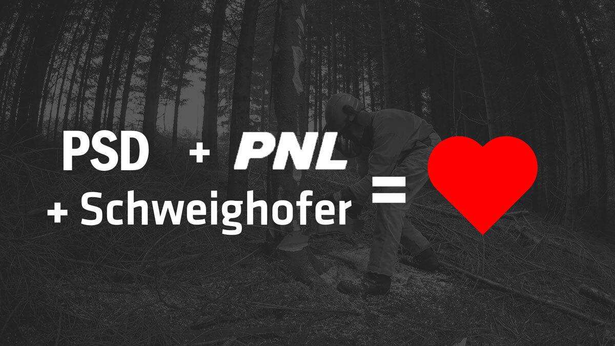 Declic acuză: Nu le pasă de păduri, PNL și PSD au bătut palma cu Schweighofer