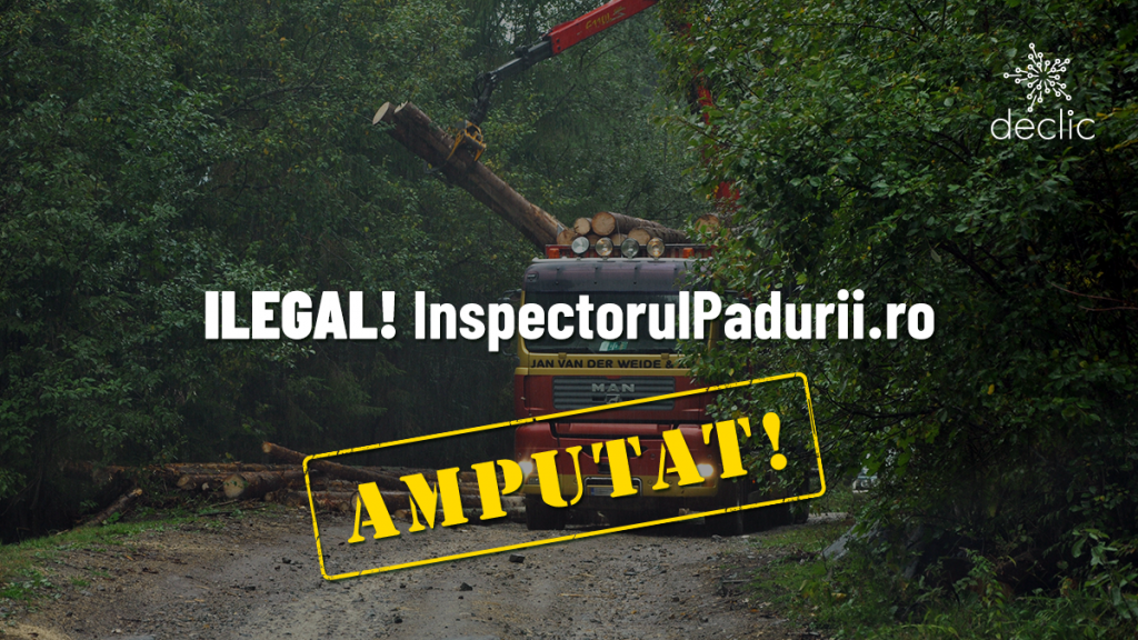 Inspectorul pădurii amputat, ilegal, de funcții importante
