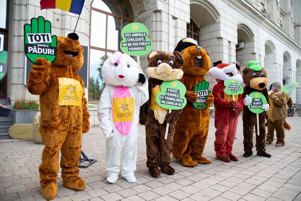 Ai văzut ursul la Ministerul Mediului?